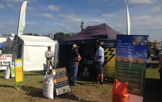 sungolf field days5JPG
